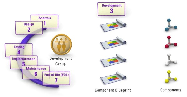 10. c development